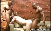 Due stalloni neri scopano per bene un maturo